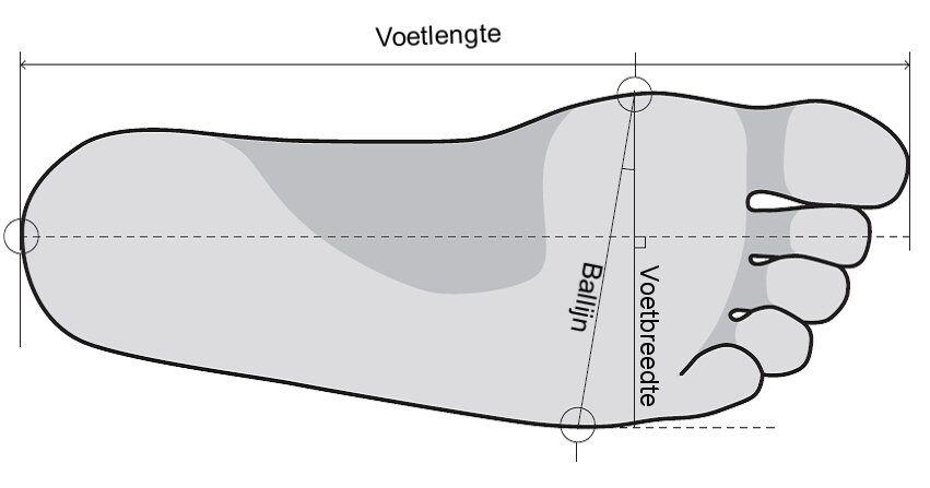 Lees meer over het artikel 3D voetscanner voor skischoenen heeft dat zin?